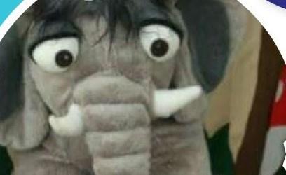 הפיל שלא רצה להיות אפור